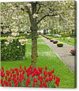 Keukenhof Gardens 33 Canvas Print