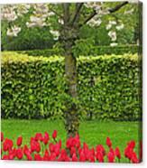 Keukenhof Gardens 34 Canvas Print
