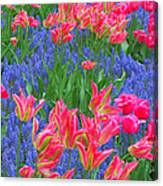 Keukenhof Gardens 5 Canvas Print