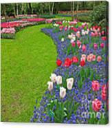 Keukenhof Gardens 52 Canvas Print