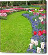 Keukenhof Gardens 54 Canvas Print