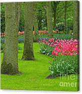 Keukenhof Gardens 60 Canvas Print