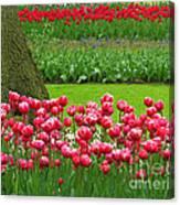Keukenhof Gardens 91 Canvas Print