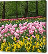 Keukenhof Gardens Panoramic 15 Canvas Print
