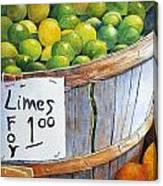 Key Limes Ten For A Dollar Canvas Print