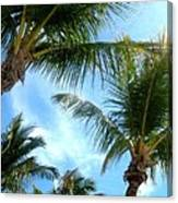Key West Perspective Of View Canvas Print