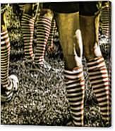 Kickball Socks Canvas Print