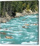 Kicking Horse River Canvas Print