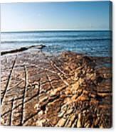 Kimmeridge Bay Seascape  Canvas Print