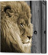 King In Sepia Canvas Print