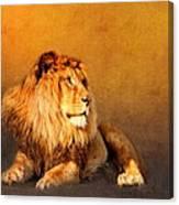 King Leo Canvas Print