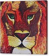 Lion In Orange Canvas Print