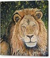 King Of The African Savannah Canvas Print
