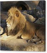 King Of The Rock Canvas Print