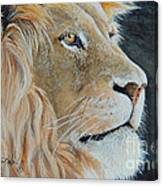 King Of The Forest.  Sold Canvas Print