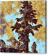Kings River Canyon Colorized Canvas Print
