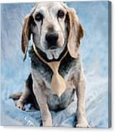 Kippy Beagle Senior And Best Dog Ever Canvas Print