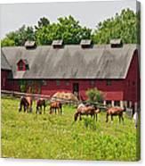 Kirtland Hills Farm 0722 Canvas Print
