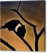 Kissing Ravens Canvas Print