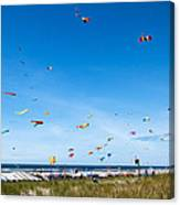Kite Festial Canvas Print