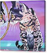 Kitten Image Canvas Print