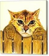 Kitten On Fence Canvas Print