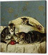 Kittens Up To Mischief Canvas Print