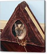 Kitty A-frame Canvas Print