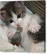 Kitty Claws Canvas Print