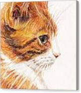 Kitty Kat Iphone Cases Smart Phones Cells And Mobile Cases Carole Spandau Cbs Art 338 Canvas Print
