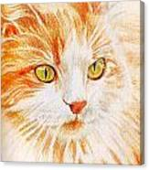 Kitty Kat Iphone Cases Smart Phones Cells And Mobile Cases Carole Spandau Cbs Art 344 Canvas Print