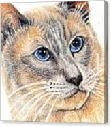 Kitty Kat Iphone Cases Smart Phones Cells And Mobile Cases Carole Spandau Cbs Art 346 Canvas Print