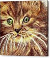 Kitty Kat Iphone Cases Smart Phones Cells And Mobile Phone Cases Carole Spandau 317 Canvas Print
