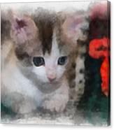 Kitty Photo Art 01 Canvas Print