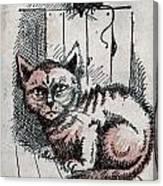 Kitty Sly Canvas Print
