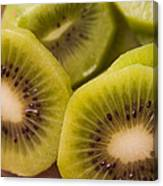 Kiwi For Lunch Canvas Print
