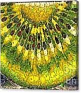 Kiwi Slice Canvas Print