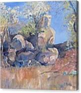Klipspringer Hideaway Canvas Print