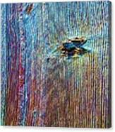 Knotty Plank #1b Canvas Print
