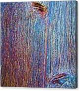 Knotty Plank #2b Canvas Print