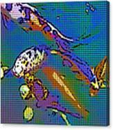 Koi 1b Canvas Print