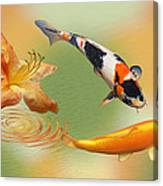 Koi With Azalea Ripples Dreamscape Canvas Print