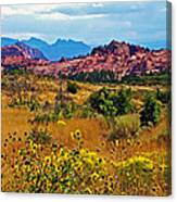 Kolob Terrace Road In Zion National Park-utah Canvas Print