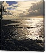 Kona Coast 4 Canvas Print