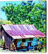 Kona Coffee Shack Canvas Print