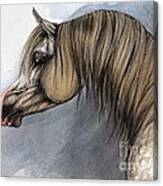 Kordelas Canvas Print