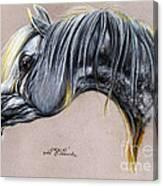 Kordelas Polish Arabian Horse Soft Pastel Canvas Print