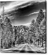 Kyle Canyon Road Canvas Print