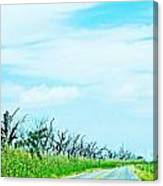 La 57 Marsh Drive Canvas Print