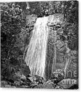 La Coca Falls El Yunque National Rainforest Puerto Rico Print Black And White Canvas Print